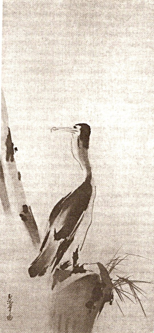 cormoran niten musashi